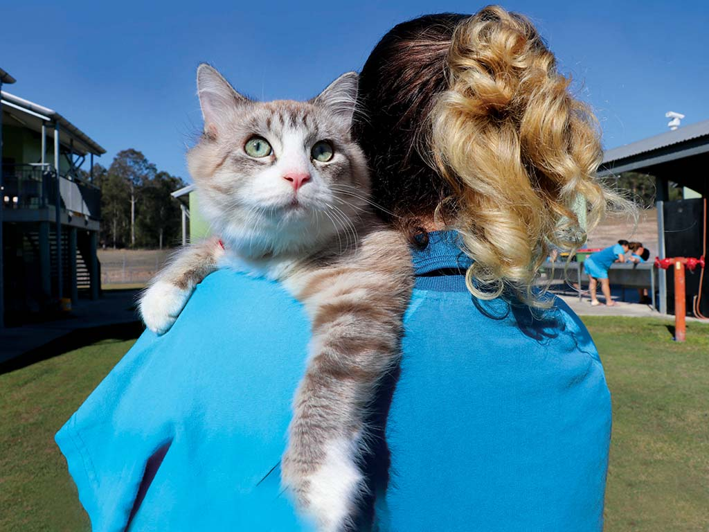 Female prisoners making a difference for pets in crisis
